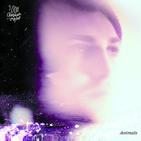 1000 Chevaux-Vapeur - Animals - pop electro music